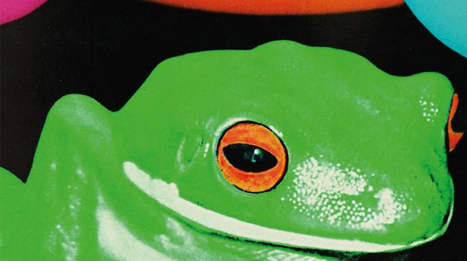 Figure 10.7 - High impact graphics using fluorescent inks