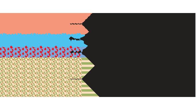 Figure 2.1 - Pressure-sensitive label construction
