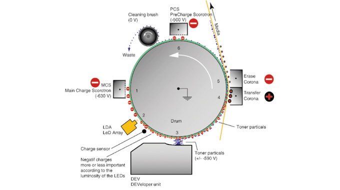 Figure 3.3 - The diagram shows the imaging process that takes place on each of the five print statio