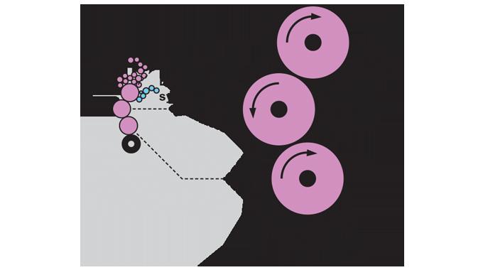 Figure 4.6 - Location of plate, blanket and impression cylinder (4impression)