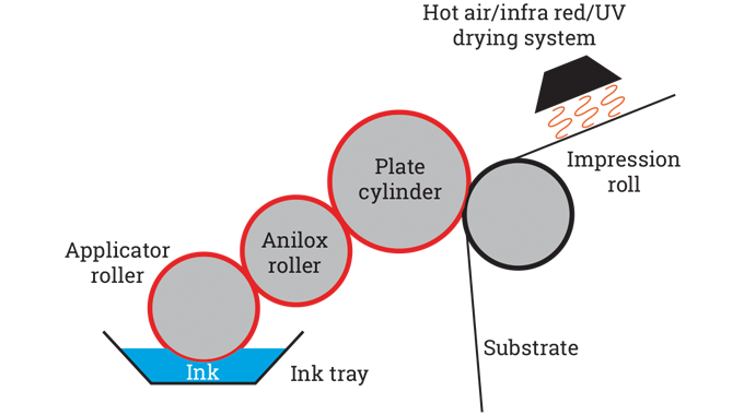 Figure 6.4 - Schematic of a flexo print unit. In UV flexo configuration a UV dryer station would fol