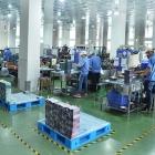 Environmental protection drives Guangdong Yingcai growth