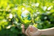 Acucote publishes sustainability commitment statement