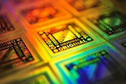 IHMA predicts strong holography growth despite Covid-19