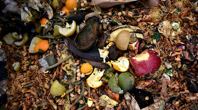 Avery Dennison has successfully achieved 'OK Compost' certification for a BPA-free and FSC-certified thermal label material